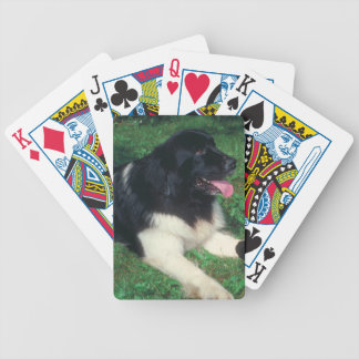 Landseer Newfoundland Dog Playing Cards