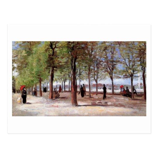 Lane at the Jardin du Luxembourg, Vincent van Gogh Postcard