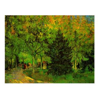 Lane in Public Garden Arles Van Gogh Fine Art Postcard
