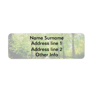 Lane With Green Trees On A Sunny Day Return Address Label