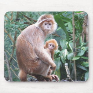Langur Monkey Mother & Baby Mouse Pad