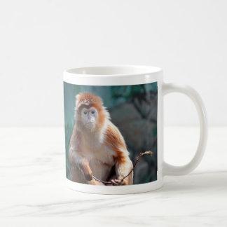 Langur Monkey Wildlife Animal Photo Coffee Mug