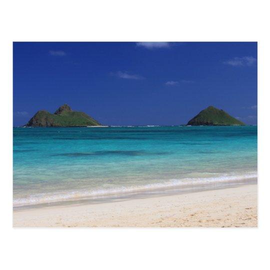 Lankai Beach hawaii Postcard