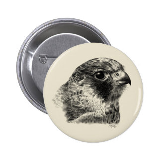 Lanner Falcon Drawing 6 Cm Round Badge