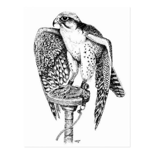 Lanner Falcon on block postcard