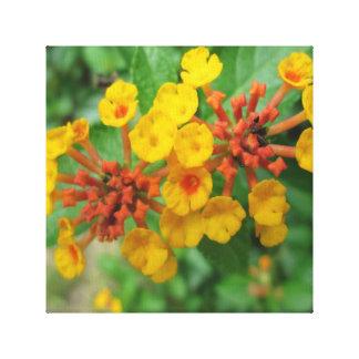 Lantana Garden Flower Yellow Canvas Prints
