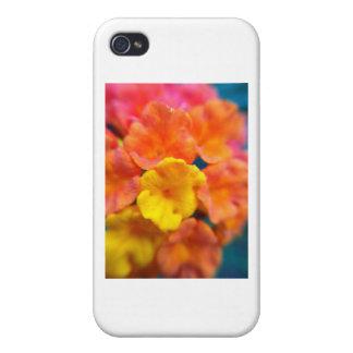 Lantana Macro iPhone 4/4S Covers
