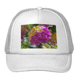 Lantana Trucker Hats