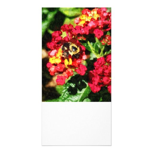 Lantanas and the Bee Photo Greeting Card
