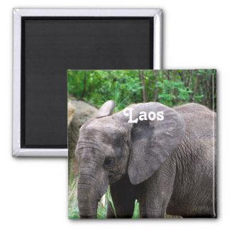 Laos Elephant Square Magnet