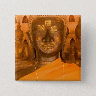 Laos, Vientiane, one of 6840 Buddha images in 2 15 Cm Square Badge
