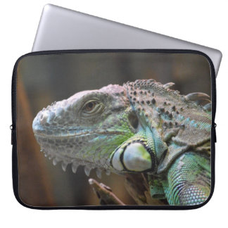 Laptop Sleeve with head of colourful Iguana lizard