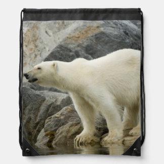 Large boar along a rocky coast in summer drawstring bag