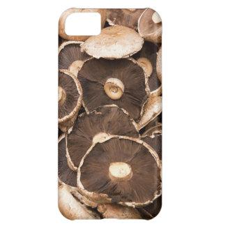 Large, Brown, Fresh, Edible Mushrooms iPhone 5C Case