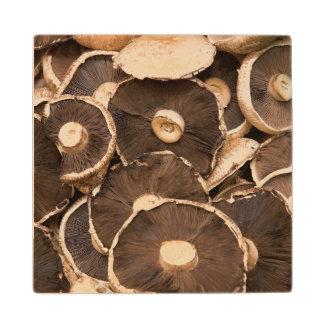Large, Brown, Fresh, Edible Mushrooms Wood Coaster