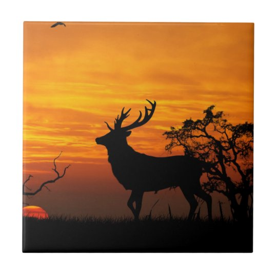 Large Buck Silhouette at Sunset Tile