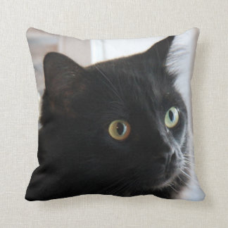 Large-eyed Black Cat Pillow, home or dorm Throw Pillow