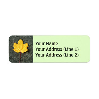 Large Fallen Yellow/Orange Autumn Tree Leaf Return Address Label