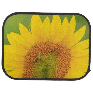 Large field of sunflowers near Moses Lake, WA 1 Car Mat