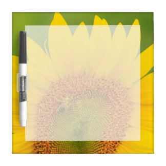 Large field of sunflowers near Moses Lake, WA 1 Dry Erase Board