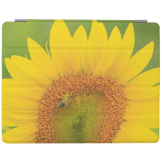 Large field of sunflowers near Moses Lake, WA 1 iPad Cover
