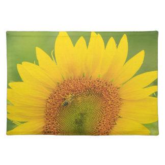 Large field of sunflowers near Moses Lake, WA 1 Placemat