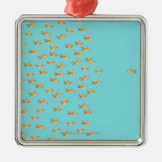 Large group of goldfish facing one lone goldfish christmas ornament
