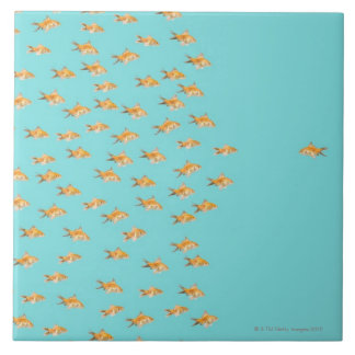 Large group of goldfish facing one lone goldfish tile