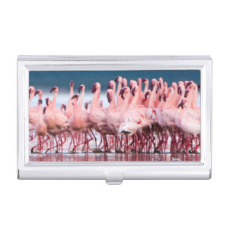 Large Group Of Lesser Flamingos Business Card Holder