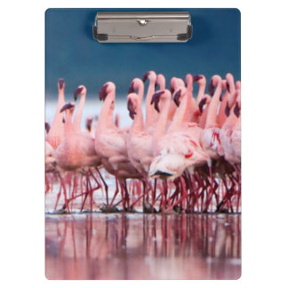 Large Group Of Lesser Flamingos Clipboard