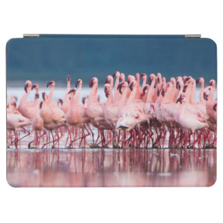 Large Group Of Lesser Flamingos iPad Air Cover