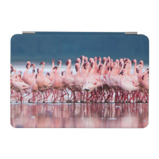 Large Group Of Lesser Flamingos iPad Mini Cover