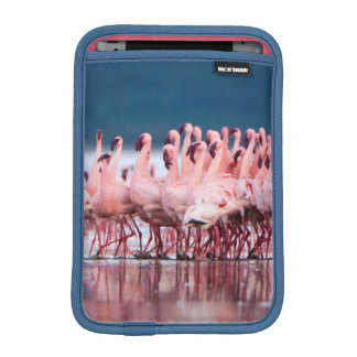 Large Group Of Lesser Flamingos iPad Mini Sleeve