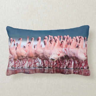 Large Group Of Lesser Flamingos Lumbar Pillow