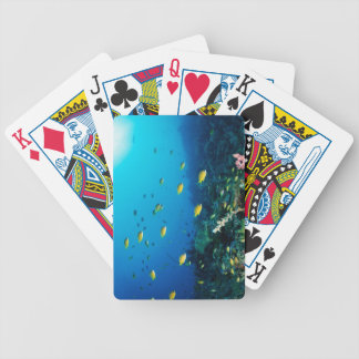 Large group of Ocellated Orange fish swimming Bicycle Playing Cards