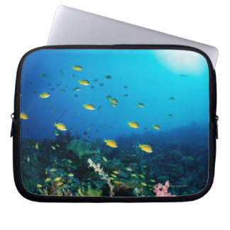 Large group of Ocellated Orange fish swimming Laptop Sleeve