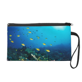 Large group of Ocellated Orange fish swimming Wristlet Clutch