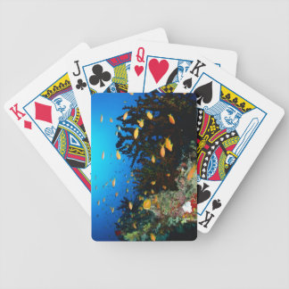 Large group of Sea Goldie fish swimming Bicycle Playing Cards