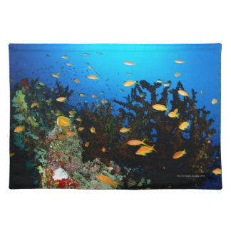 Large group of Sea Goldie fish swimming Placemat