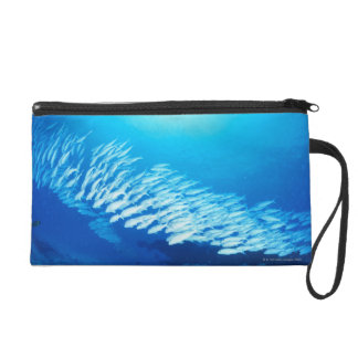 Large group of Yellowfin Goatfish swimming Wristlet Purse