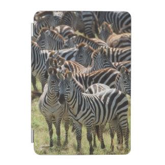 Large herd of Burchell's Zebra iPad Mini Cover