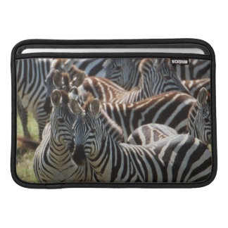 Large herd of Burchell's Zebra MacBook Sleeve