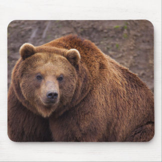 Large Kodiak Bear Mouse Mat