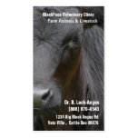 Large Livestock Veterinarian - Black Angus Cow Pack Of Standard Business Cards