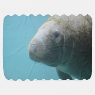Large Manatee Underwater Buggy Blanket