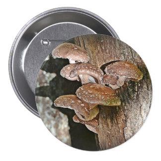 Large Mushroom Button 3 Inch Round Button