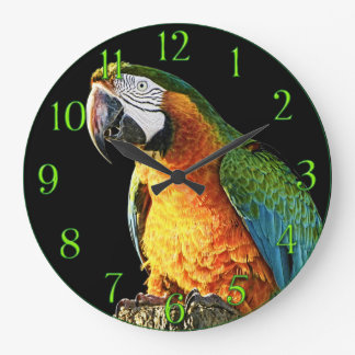 Large Orange and Teal Parrot on a Stump Large Clock