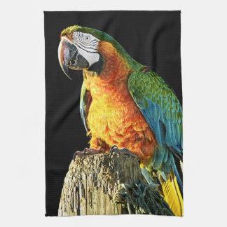 Large Orange and Teal Parrot on a Stump Tea Towel