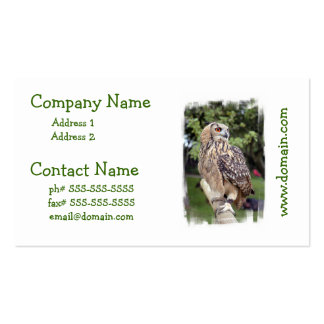 Large Owl on Fence Business Cards