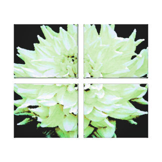 Large Pale Green Dahlia Stretched Canvas Print